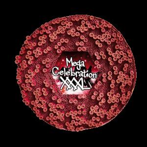 Celebration XXXL